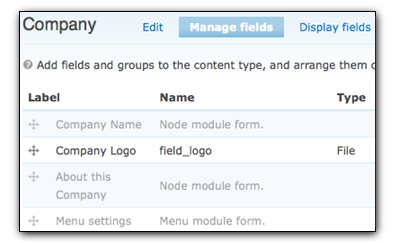 company content type's fields